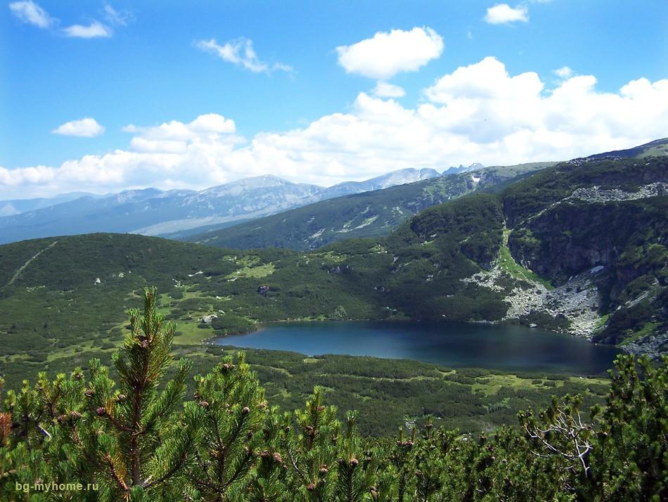 Болгария. Рильские хвойные леса у 7-ми озёр